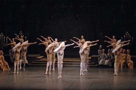 「ライモンダ」 2008年 撮影:鹿摩隆司